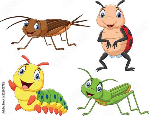 Fotografía Cartoon insect collection set