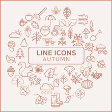Simple Set Of Autumn Related Line Icons.