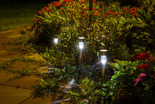 Night Garden LED Lights With A...