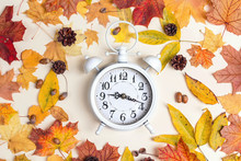 White Alarm Clock With Autumn ...