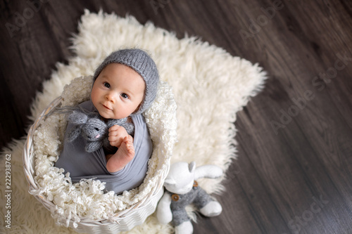 Fotografie, Obraz  Sweet baby boy in basket, holding and hugging teddy bear, looking curiously at c