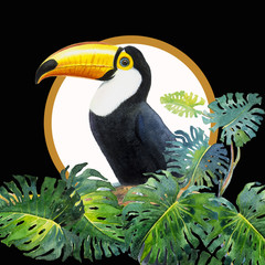 Panel Szklany Do jadalni Toucan bird sitting on the branch with monstera.