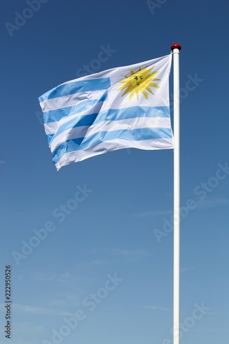 Foto op Canvas Zuid-Amerika land Flag of Uruguay waving in the sky
