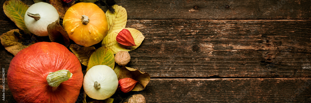 Fototapety, obrazy: Autumn Harvest and Holiday still life. Happy Thanksgiving Banner. Selection of various pumpkins on dark wooden background. Autumn vegetables and seasonal decorations.