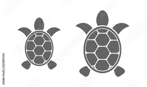 Fototapeta premium Two turtles icons