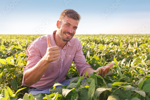 Young farmer in field examining soybean corp. He is thumbs up. Fototapete