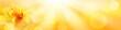 canvas print picture - Goldener Herbst Hintergrund  -  Biene auf Dahlie