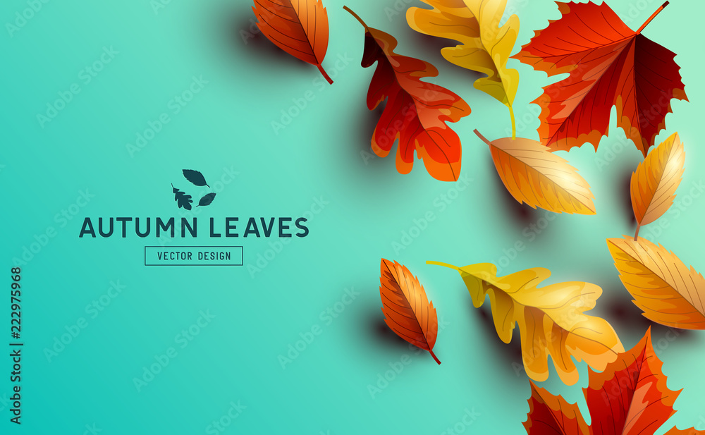 Fototapety, obrazy: Vector Background With Autumn Golden Leaves