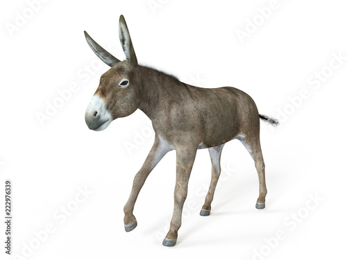 Fotografia, Obraz 3d rendered illustration of a donkey