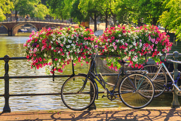 Beautiful vibrant summer flowers and a bicycle on a bridge on the famous world heritage canals of Amsterdam, The Netherlands