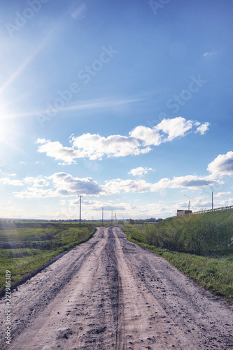 Tuinposter Lavendel Landscape is summer. Green trees and grass in a countryside land