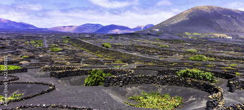 Tuinposter Canarische Eilanden Wine Valley of La Geria - Lanzarote, Canary Islands, Spain
