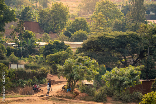 Cuadros en Lienzo View of bakclit trees and dirt paths on a hillside in Nyamirambo, an outlying, s