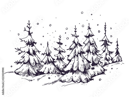 Winter background with snow and fir-trees. Hand drawn illustration converted to vector.