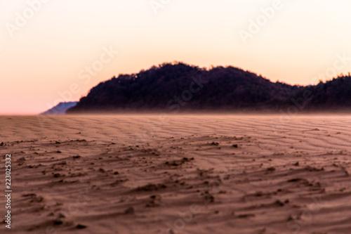 砂丘の風紋