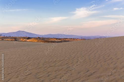 Papiers peints Cappuccino 砂丘の風紋