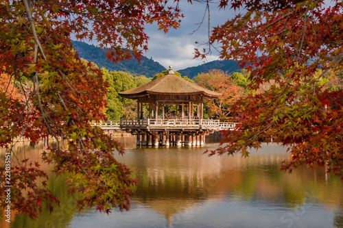 Foto op Plexiglas Japan Scenic view of Nara public park in autumn, with maple leaves, pond and old pavilion, in Japan