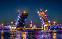 Divorced Palace Bridge In Front Of Peter And Paul Fortress. Sankt Peterburg.