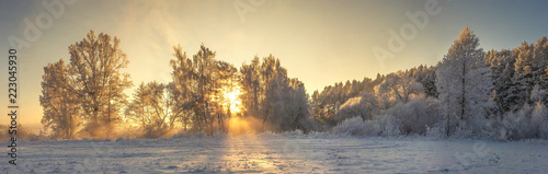 Panoramic winter landscape. Frosty nature in warm golden sunlight. Vivid sunbeams glows on trees covered hoarfrost. Beautiful winter morning. Amazing winter. Christmas and New Year background