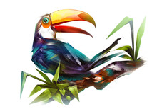 Painted Bird Toucan On A Branch On A White Background