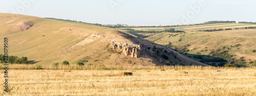 Spoed Foto op Canvas Beige Endless golden color kazakh grass landscape