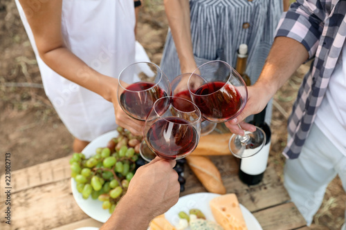 Friends holding glasses of wine over picnic table at vineyard