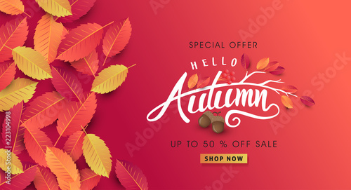 Fototapeta Autumn sale background layout decorate with leaves of autumn for shopping sale or promo poster and frame leaflet or web banner.Vector illustration template. obraz