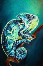 Chameleon Hand Drawing Illustration