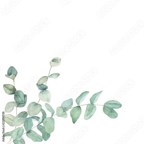 Plissee mit Motiv - Watercolor floral card with eucalyptus branch. Hand drawn botanical illustration. Art background (von natikka)