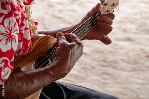 Fototapeta old man hands playing hukulele in french polynesia
