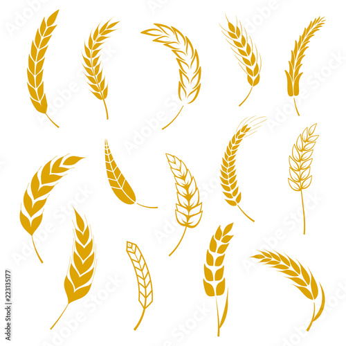 Set of simple wheats ears icons and grain design elements for beer, organic wheats local farm fresh food, bakery themed wheat design, grain, beer elements, wheat simple Canvas-taulu