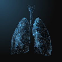 Lungs. Low Poly Blue. Polygona...