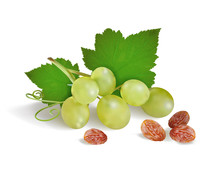 Grapes And Raisins On A White Background. Vector Illustration