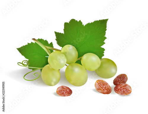 grapes and raisins on a white background. Vector illustration Fototapete