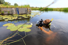 Very Handsome Young Man In A River With Water Lilies In Rijpwetering, The Netherlands, With Equipment For Underwater Photography On July 19, 2014