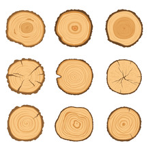 Set Of Round Cross-sections Of A Tree With A Different Ring Pattern Isolated On A White Background. Vector Illustration