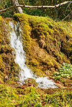 Beautiful Green Small Waterfall In A Summer Forest.