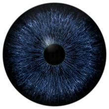 Dark Scary Blue Eyeball, Animal And Human Eye, Dog And Cat Eyeball, Isolated On White Background, Black Pupil