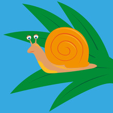 Cartoon Snail Sits On The Green Leaves
