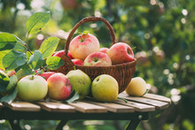 Organic Apples And Pears In Basket On A Wooden Table, Outdoors.