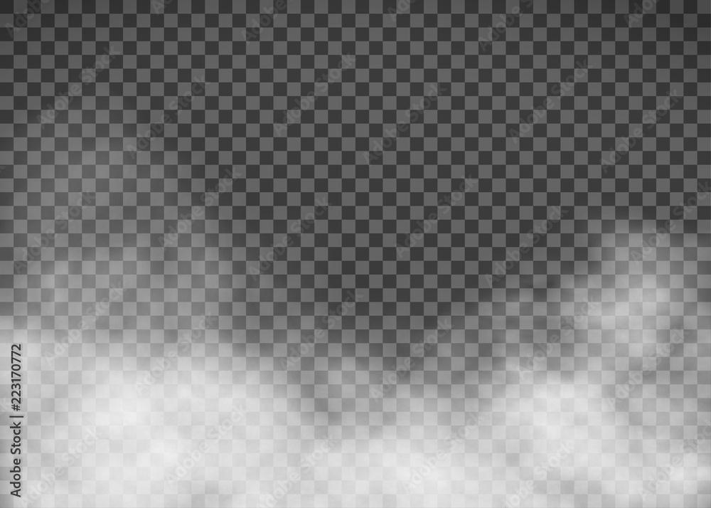 Fototapeta White smoke on a transparent background. Template fog.