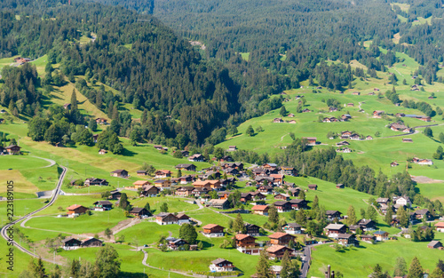 Spoed Foto op Canvas Khaki Landscape with mountain village in summer, Grindelwald, Switzerland