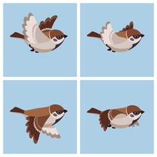 Flying Tree Sparrow Animation ...