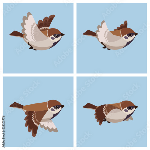 Valokuva  Flying Tree Sparrow animation sprite sheet