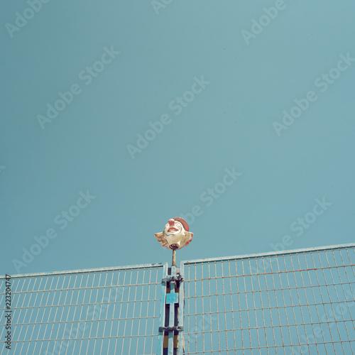 Fényképezés  Imagen de cabeza de payaso coronando una verja de una cancha deportiva