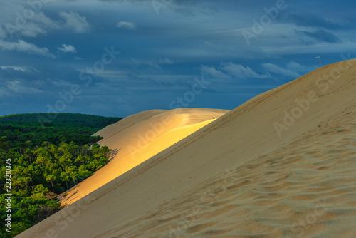 Dune du Pilat - größte Wanderdüne Europas Wallpaper Mural