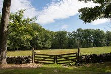 Wooden Gate And Rock Wall In P...