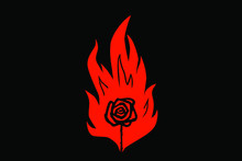 The Rose In The Flame Of A Match