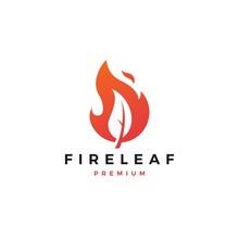 Fire Leaf Logo Flame Vector Ic...