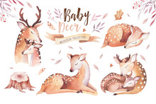 Cute Watercolor Baby Deer Anim...
